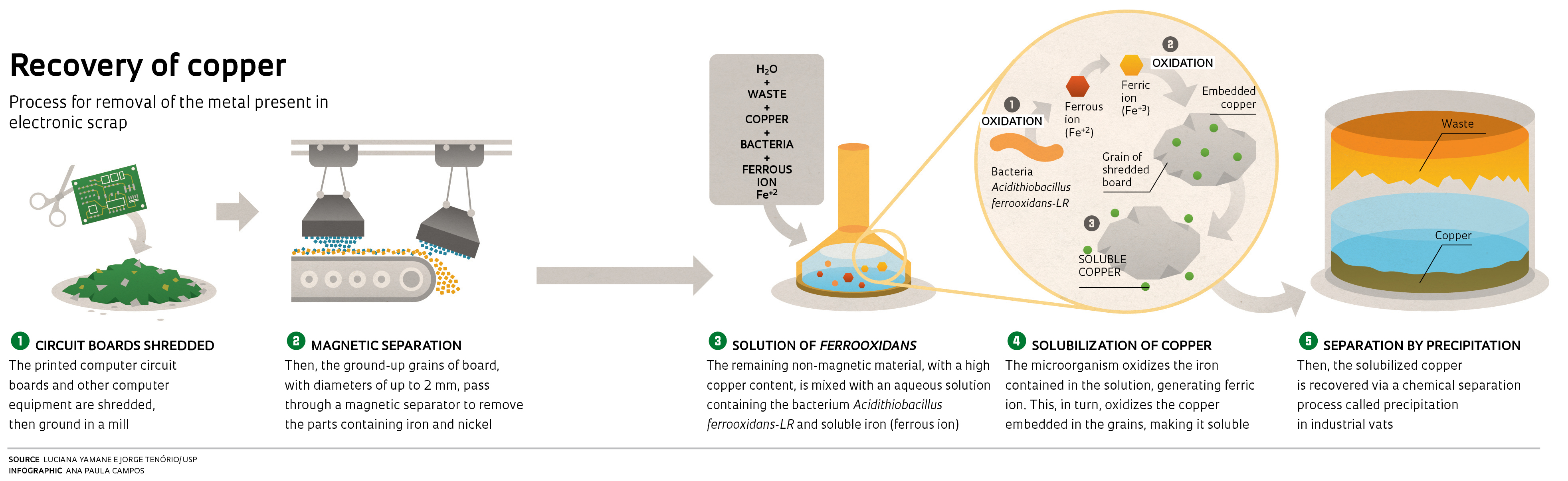 Mining With Microbes Revista Pesquisa Fapesp Of Printed Circuit Board Illustration A Green Yamanes Greatest Challenge Was How To Condition The Microorganisms Whose Natural Habitat Are Rocks Containing Iron Survive And Reproduce In Liquid
