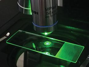 sistema de avaliação por espectroscopia Raman