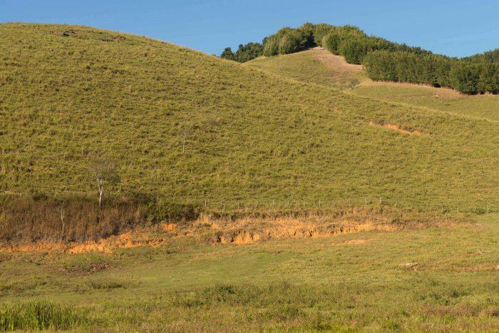 Eucaliptos e morro erodido nos arredores de Bananal em 2015