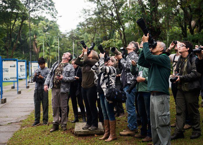 Grupo observa e fotografa aves na mata do Instituto Butantan