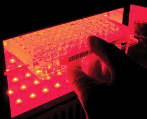 ... e pesquisa em terapia fotodinâmica no Instituto de Física de São Carlos da USP: as duas cidades têm sistemas de inovação distintos