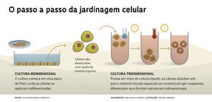 058-061_Biologia 3D_254-info1