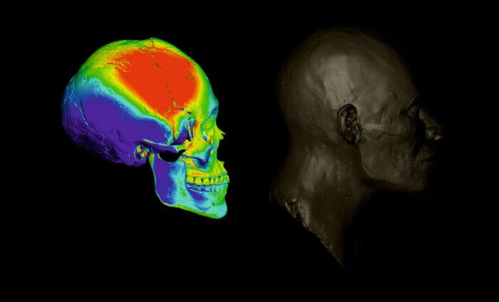 Proceso de reconstrucción facial a partir de un cráneo hallado en Lapa do Santo, de un hombre que vivió hace alrededor de 9 mil años (arte en 3D de André Strauss, con base en la reconstrucción de Caroline Wilkinson)