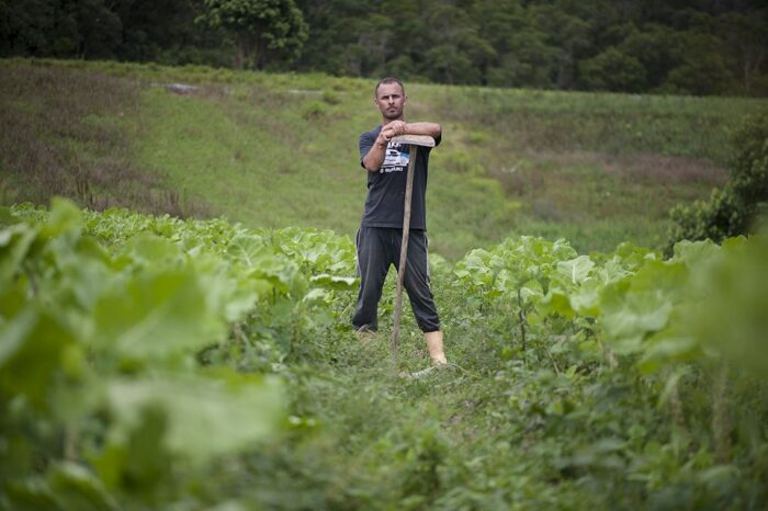Agricultor em Parelheiros, na zona sul da cidade. Sítio que produz verduras e vários tipos de plantas alimentícias não convencionais (PANCs) está em processo de transição da agricultura tradicional à agroecológica